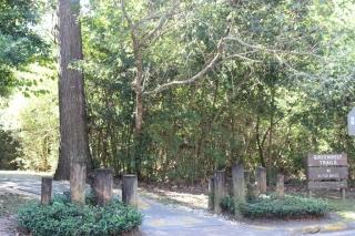 Greenbelt Trails in Bear Branch